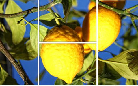 citron-mosaique-0cb07
