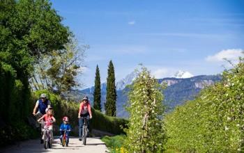 Familienhotels, in Alto Adige/Südtirolper