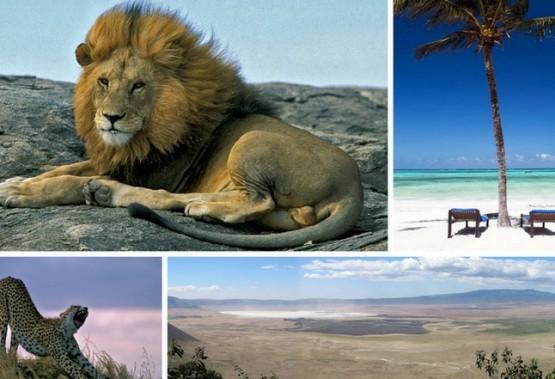 Safari a Ngorongoro & Zanzibar