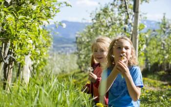 Alto Adige. In primavera, natura & movimento con i Familienhotels