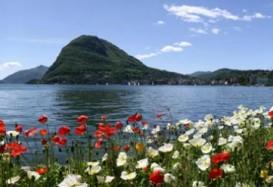 Alla scoperta del Ticino in fiore