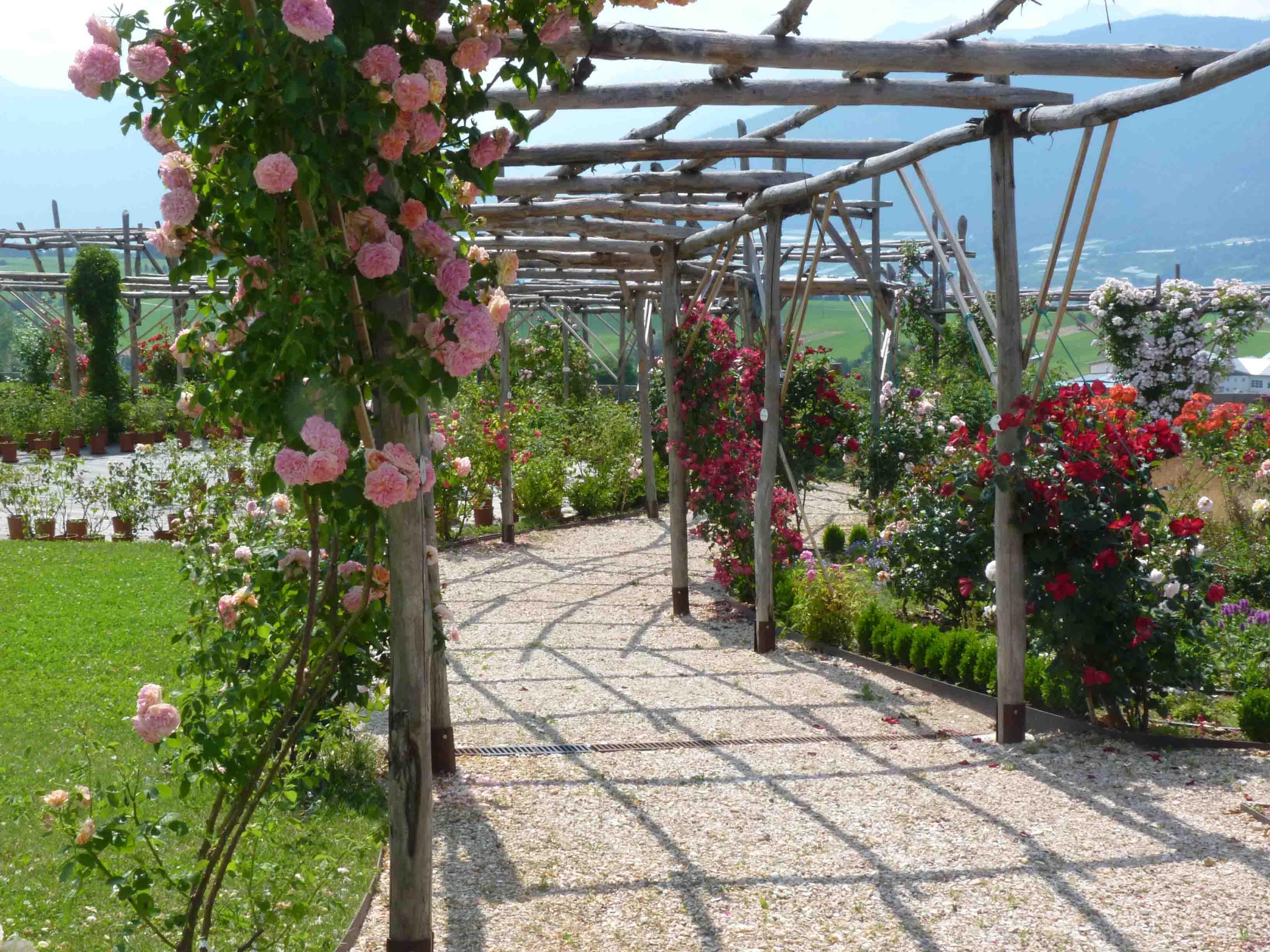 Grandi giardini italiani le novit classtravel - Il giardino di ausonia ...